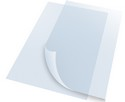 Plastic Clear Lens (Pair) 22